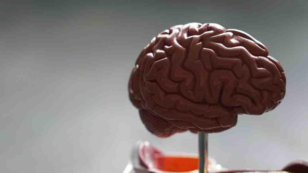 Comment entrainer son cerveau